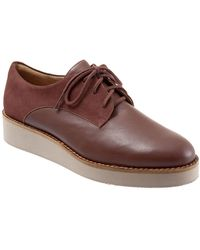 Softwalk Willis Lace Up Oxfords - Brown
