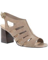 Bella Vita Colleen Dress Shoe - Multicolor