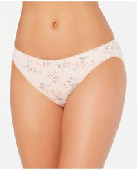 Charter Club Pretty Cotton Bikini Underwear, Created For Macy's - Pink