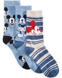 Disney 3-pk. Mickey Mouse Socks Gift Box - Blue