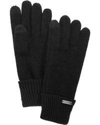 Steve Madden - Solid Boyfriend Touch Gloves - Lyst