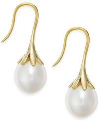 Macy's Cultured Freshwater Pearl Drop Earrings 14k White Or Yellow Gold - Metallic