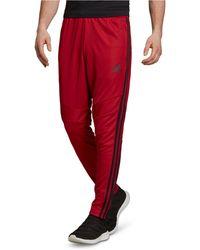 Tiro Climacool® Soccer Pants Red