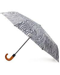 Patricia Nash Zebra Magliano Umbrella - Black