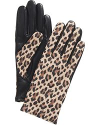 Charter Club Cashmere Lined Leather Tech Gloves, Created For Macy's - Brown