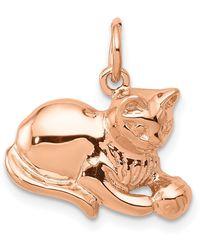 Macy's Cat Charm 14k Rose Gold - Metallic