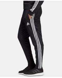 Tiro 19 Climacool® Soccer Pants Black