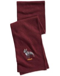 Polo Ralph Lauren - French Bulldog Scarf (classic Wine) Scarves - Lyst