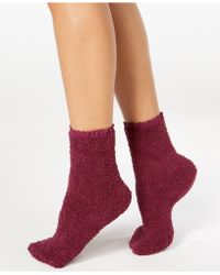 Charter Club Lace-trim Supersoft Socks, Created For Macy's - Red