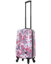 "Halina Car Pintos Fly 20"" Hard Side Spinner Suitcase - Multicolour"