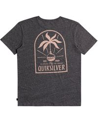 Quiksilver - Time Reminder Organic Tee - Lyst