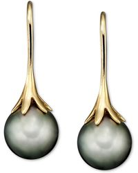 Macy's - 14k Gold Earrings, Cultured Tahitian Pearl - Lyst