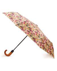 Patricia Nash Antique Rose Magliano Umbrella - Pink