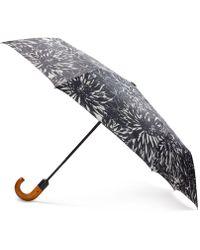 Patricia Nash Magliano Umbrella - Black