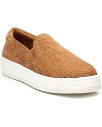 Matisse Dandy Sneakers - Brown