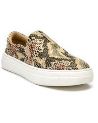 Matisse Harry Sneakers - Multicolour