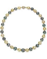 Macy's - Cultured Tahitian Pearl And Cultured Golden South Sea Pearl (10-13mm) Collar Necklace - Lyst