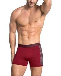 Leo Flex-fit Boxer Brief - Red