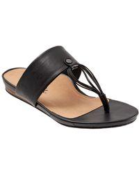 Softwalk Calimesa Sandal - Black