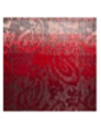 Steve Madden Mid Weight Ombré Paisley Muffler Scarf - Red