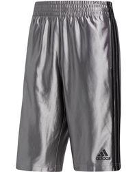 """adidas - Dazzle Tricot 11"""" Shorts - Lyst"""