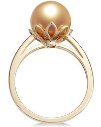 Macy's - Cultured Golden South Sea Pearl (10mm) Ring In 14k Gold - Lyst