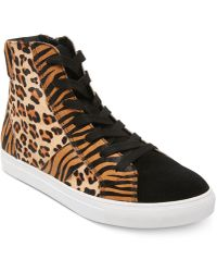Steve Madden Argos Animal-print High-top Sneakers - Multicolour