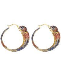 Noir Jewelry Multi-colored Cubic Zirconia Parrot Hoop Earring - Metallic