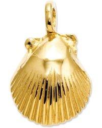 Macy's | 14k Gold Charm, Seashell Charm | Lyst