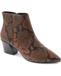 Kensie Leticia Ankle Booties - Brown