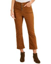 Style & Co. Corduroy Flared Button Pants, Created For Macy's - Brown