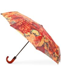 Patricia Nash Magliano Umbrella - Multicolour