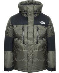 838f188fd Himalayan Gtx Jacket Green