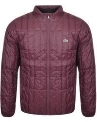 Lacoste Packable Down Jacket Burgundy - Purple