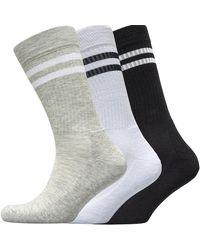 French Connection Fcuk Three Pack Sport Stripe Socks Black/white/light Grey Marl