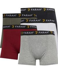 Farah Boxer Gaveer Noir