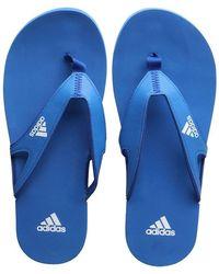 adidas Tongs Calo 5 Bleu