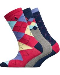 Original Penguin Three Pack Socks Argyle Hot Pink/navy/grey - Blue