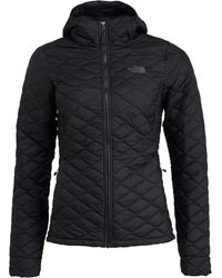 The North Face Thermoball Insulated Hoodie Jacket Tnf Black Matte
