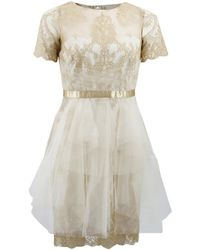 Marchesa notte Metallic Lace Dress