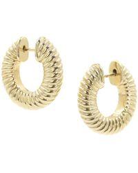 Bondeye Lulu Textured Gold Hoops - Metallic