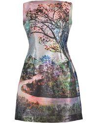 Mary Katrantzou Sleeveless Kardia Tree Print Dress - Multicolor