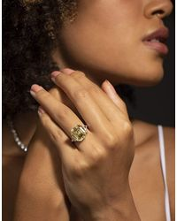 Fantasia by Deserio 12ct Canary Asscher Cut Ring - Brown
