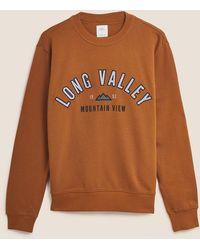 Marks & Spencer Pure Cotton Graphic Sweatshirt - Brown