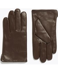 Marks & Spencer Leather Gloves With Thermowarmthtm - Brown