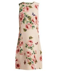 Dolce & Gabbana - Rose And Butterfly-print Wool-blend Dress - Lyst