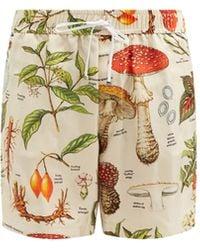 Amiri Psychedelic Mushroom-print Silk Bermuda Shorts - Multicolour