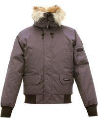 Canada Goose Manteau à capuche matelassé de duvet Chilliwack - Gris