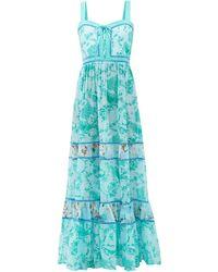 Evi Grintela Magnolia Countryside-print Cotton Maxi Dress - Blue