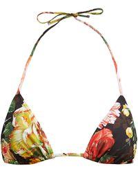 Dolce & Gabbana Haut de bikini triangle à imprimé floral - Noir